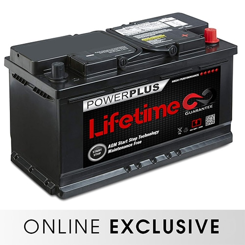 LIFETIME 096 110 019 BATTERY