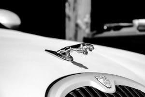 Jaguar car battery banner